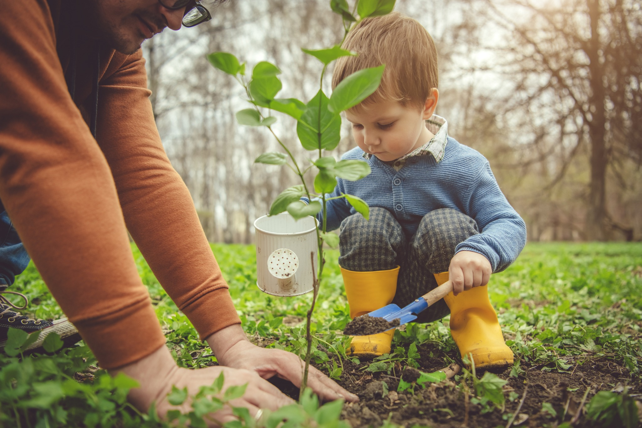 Boy in yellow boots watering sapling.